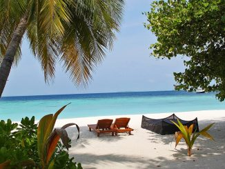 Strand Idylle auf den Malediven
